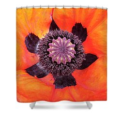 Heart Of A Poppy Shower Curtain