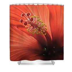 Heart Of Hibiscus Shower Curtain