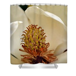 Shower Curtain featuring the photograph Heart Of Magnolia by Larry Bishop