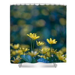 Shower Curtain featuring the photograph Heart Of Small Things by Rima Biswas