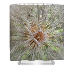 Heart Of The Dandelion Shower Curtain