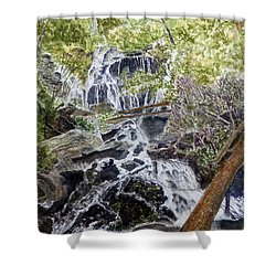 Heart Of The Forest Shower Curtain by Joel Deutsch
