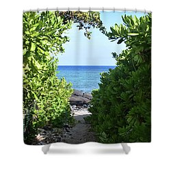 Shower Curtain featuring the photograph Heart Of The Path by Pamela Walton