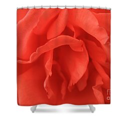 Heart Of The Rose - Red Shower Curtain