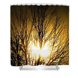 Heart Of The Sun Shower Curtain