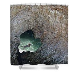 Heart Rock Otter Shower Curtain