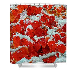 Heart Shape Leaves Covered By Snow Shower Curtain