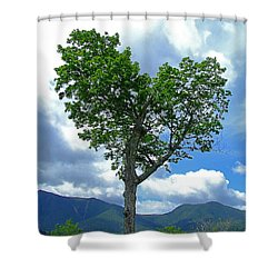 Heart Shaped Tree Shower Curtain
