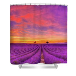 Heart To Heart Shower Curtain by Midori Chan