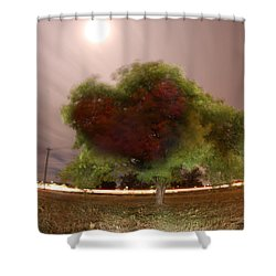 Heart Tree Scene Shower Curtain