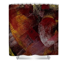 Hearts Shower Curtain by David Patterson