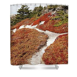 Heather Run Shower Curtain