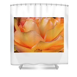 Shower Curtain featuring the photograph Heaven Scent by Karen Wiles