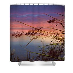 Heavenly Bliss Shower Curtain by Brenda Bostic