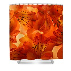Heavenly Shower Curtain by Bobby Villapando