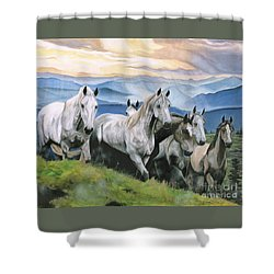 Heavenly Home Shower Curtain