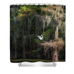 Heavenly Nest  Shower Curtain