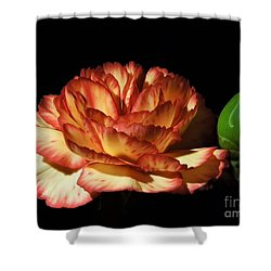 Heavenly Outlined Carnation Flower Shower Curtain
