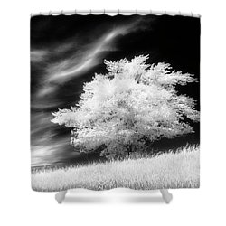 Heavenly Places Shower Curtain by Dan Jurak