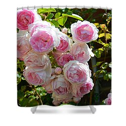 Heavenly Roses Shower Curtain