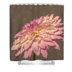 Shower Curtain featuring the photograph Heavenly Scent by Rose-Maries Pictures