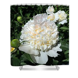Heavenly White Shower Curtain