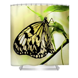 Shower Curtain featuring the photograph Heaven's Door Hath Opened by Karen Wiles