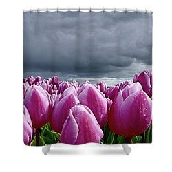 Heavy Clouds Shower Curtain by Mihaela Pater