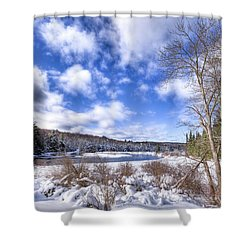 Shower Curtain featuring the photograph Heavy Snow At The Green Bridge by David Patterson
