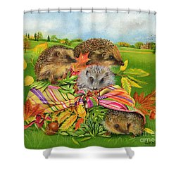 Hedgehogs Inside Scarf Shower Curtain by EB Watts