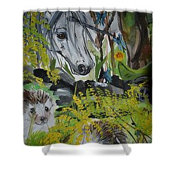 Hedgies Shower Curtain