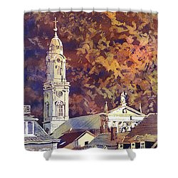Shower Curtain featuring the painting Heidelberg Evening by Ryan Fox
