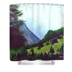 Shower Curtain featuring the painting Heidi's Place by Patricia Griffin Brett