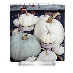 Heirloom Pumpkins And Antlers Shower Curtain