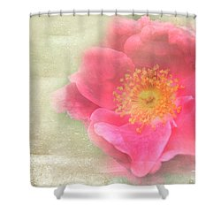 Heirloom Rose Shower Curtain