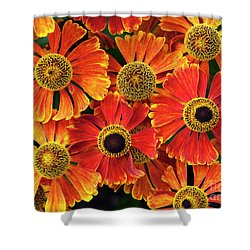 Helenium Waltraut Pattern Shower Curtain