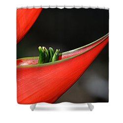 Heliconia Flower Petal Shower Curtain