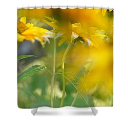 Heliopsis Blur Shower Curtain