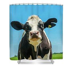 Hello Bessie Shower Curtain