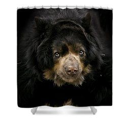 Shower Curtain featuring the photograph Hello From Me by Cheri McEachin