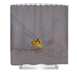 Shower Curtain featuring the photograph Hello by Ramona Whiteaker