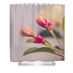 Shower Curtain featuring the photograph Hello Spring by Yvette Van Teeffelen