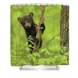 Shower Curtain featuring the photograph Hello There by Coby Cooper