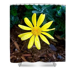 Hello Yellow Shower Curtain by Russell Keating