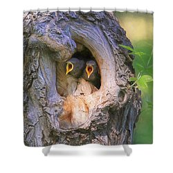 Hello - Anybody Out There  Shower Curtain by Donna Kennedy