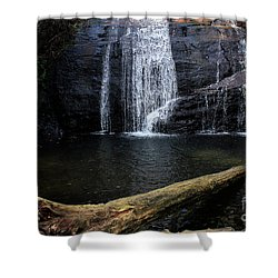 Helton Creek Falls Georgia Shower Curtain
