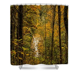 Helton Falls Through The Leaves Shower Curtain