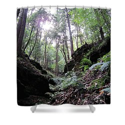 Hemlock Gorge Shower Curtain