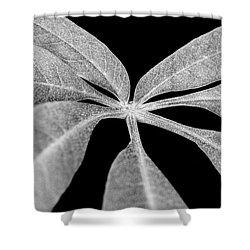 Hemp Tree Leaf Shower Curtain