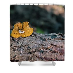 Hen Of The Woods Mushroom Shower Curtain
